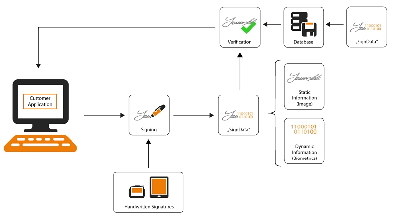 Graphic: signotec Biometric-API Diagram EN © signotec GmbH